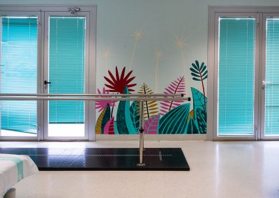 Recreando Estudio - Lesionados Medulares Hospital Miguel Servet